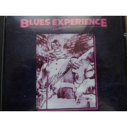 "Blues Experience ""Volume 1"" CD"