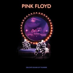 Pink Floyd – Delicate Sound Of Thunder 2XCD, Dig.